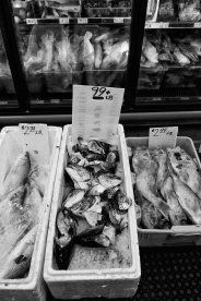 Fish by the Pound (Chinatown Hustle Series), Oakland CA, Fall 2016.